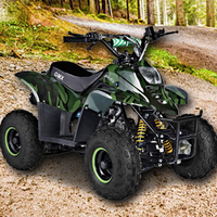 110CC Junior Quad Bike