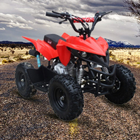 60CC Quad Bike