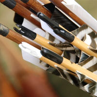 Bow Arrows