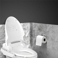 Toilet & Bidet Accessories